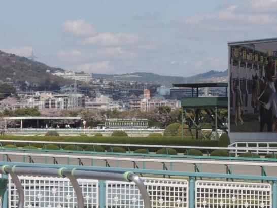 阪神競馬場風景3