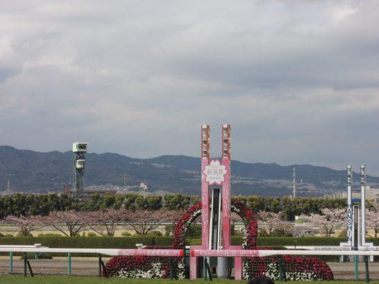 桜花賞ゴール