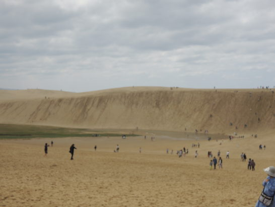 砂丘景色1